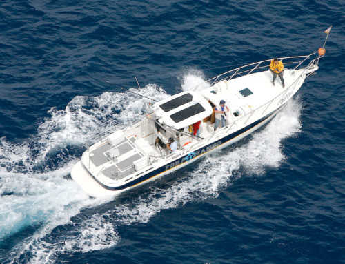 Fishing trip on 13m motor yacht