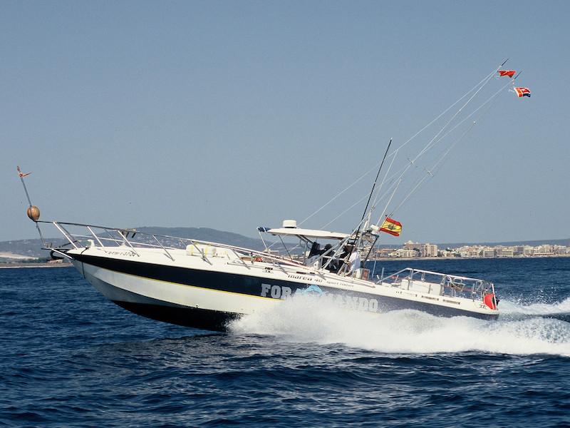 Motoryacht Speed